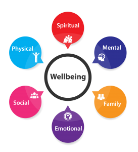 6 domains of health